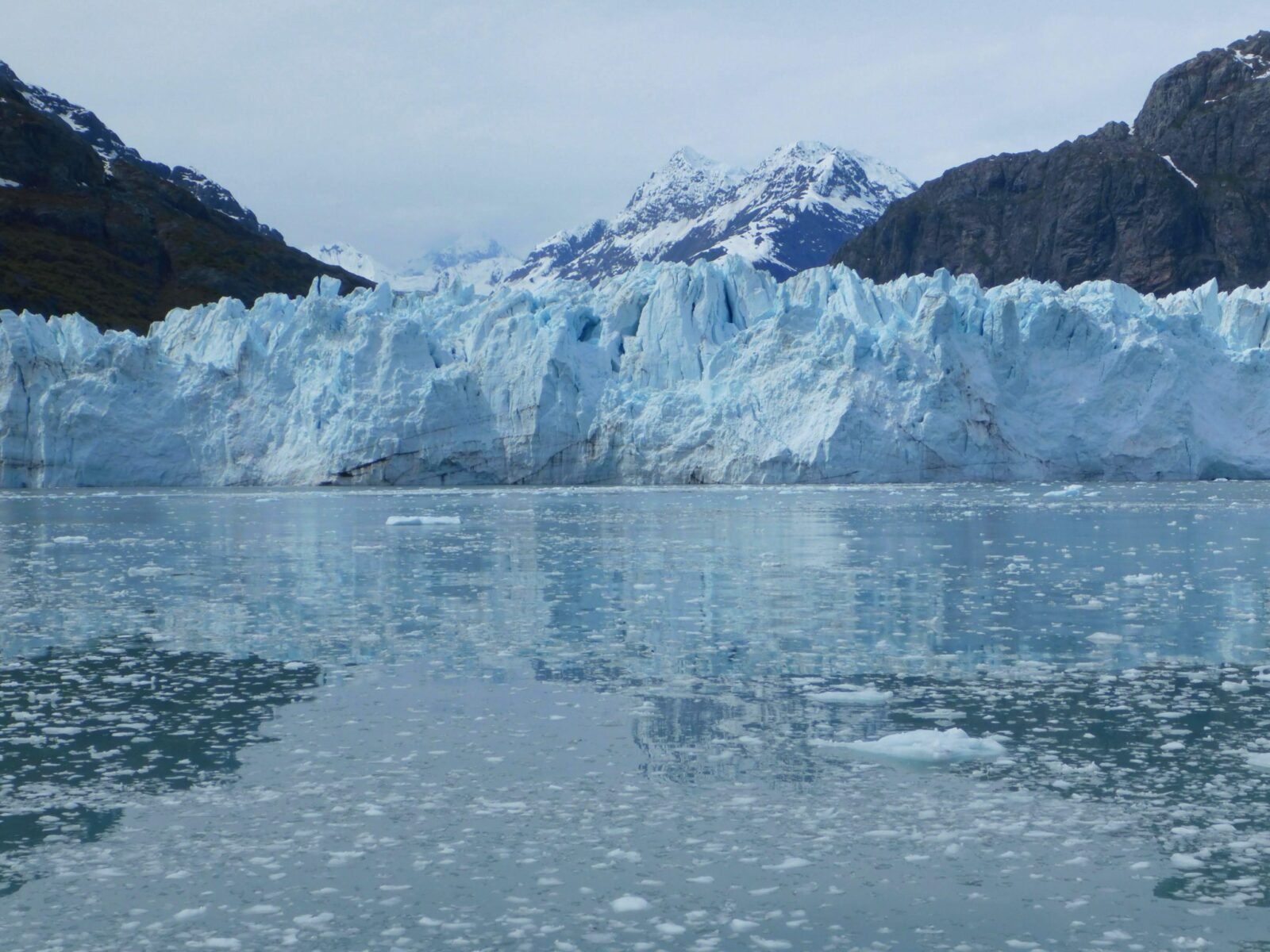 Mountains and a glacier are reflected in the water which has lots of little pieces of ice in it on a visit to Glacier Bay national park