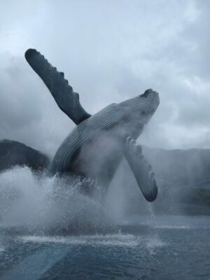 A life like statue of a humpbackwhale breaching surrounded by a fountain in Juneau Alaska