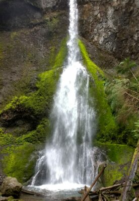 A high and narrow waterfall over a moss covered rock face