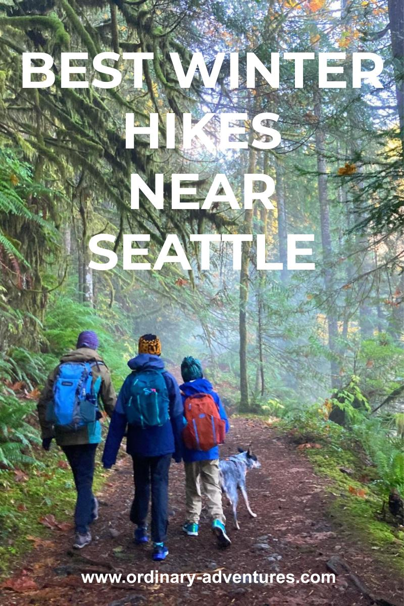 A foggy green forest with a wide trail. Three hikers and a dog are walking away from the camera into the forest. Text reads: Best winter hikes near seattle
