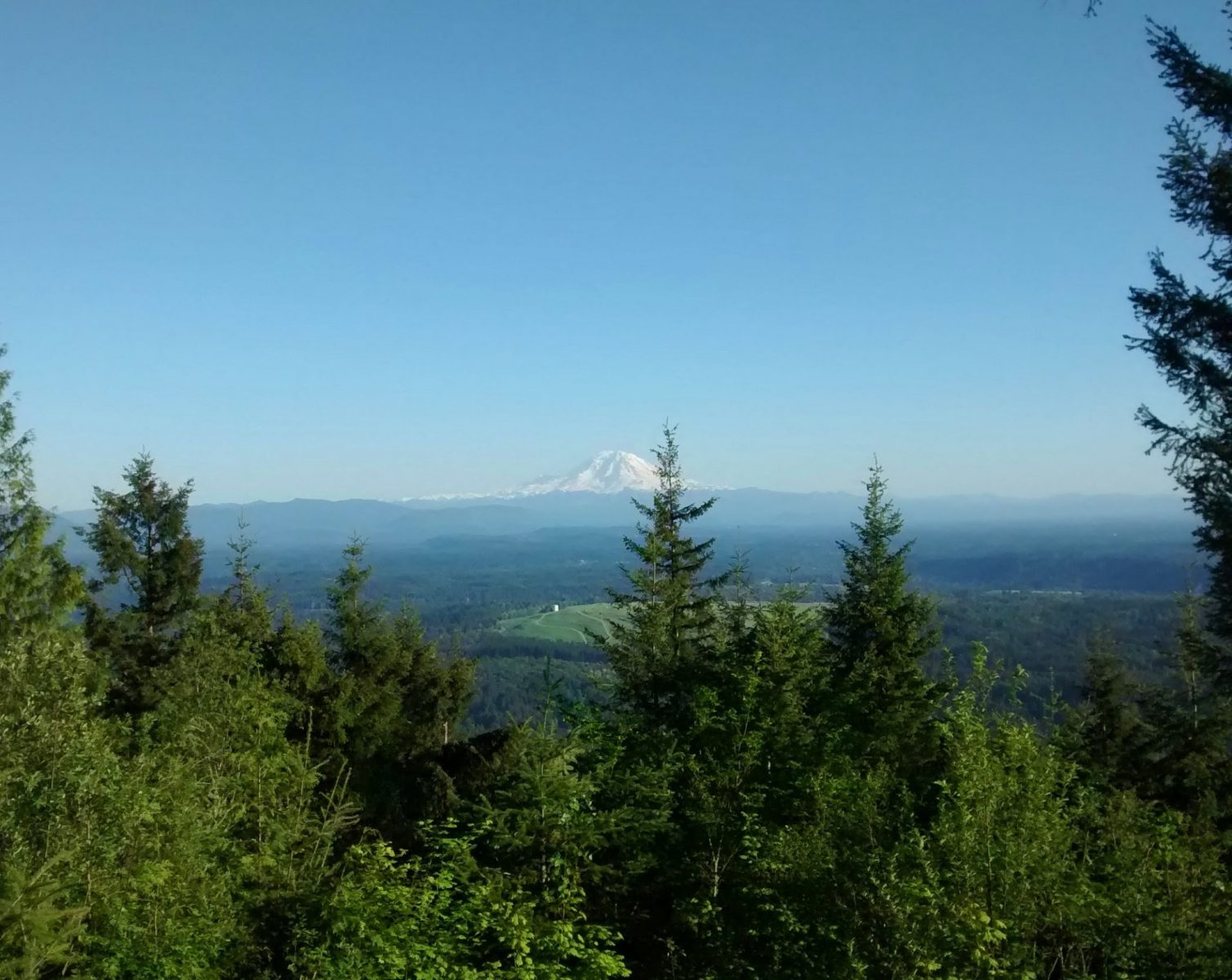 Mount Rainier in the distance with trees in the foreground and green valleys in between