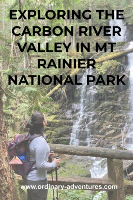 A hiker looking at a waterfall in an evergreen forest near the Carbon River Trail. Text reads: Exploring the Carbon River valley in Mt Rainier National Park