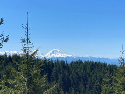 Mt Rainier dominates the view from West Tiger Mountain 1 on a sunny day. There is a forested hillside in the foreground
