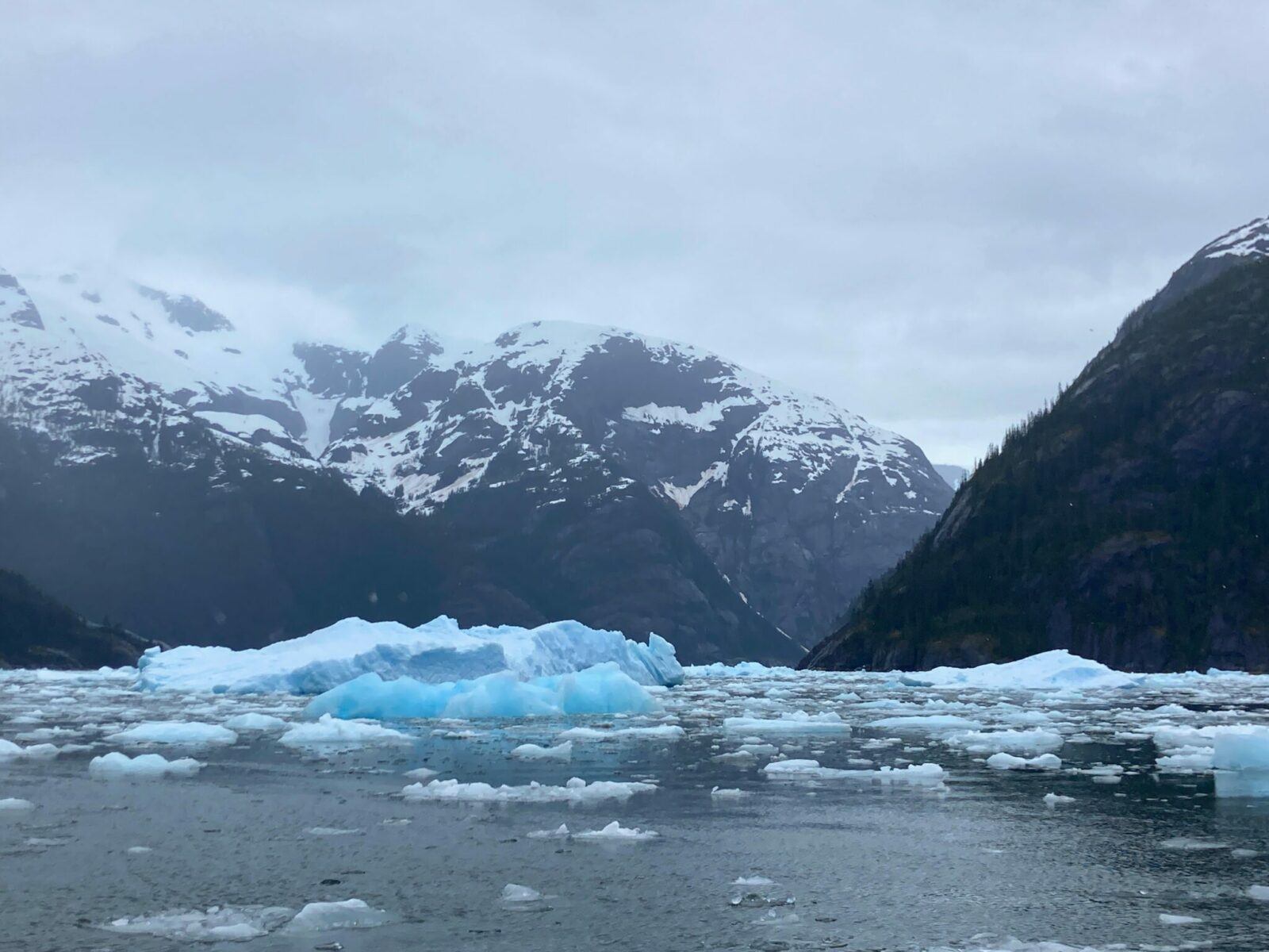 A fjord full of glacial ice bergs in a narrow bay surrounded by high mountains and snow on a cloudy and rainy day
