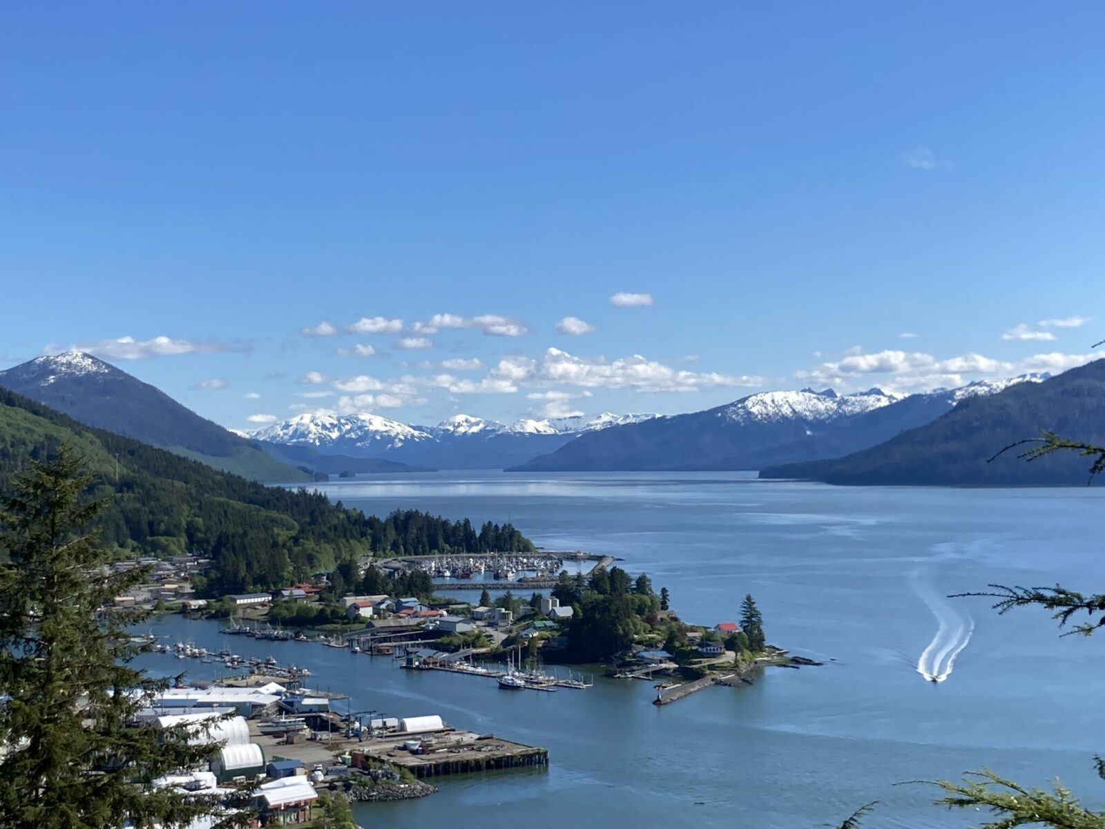 A view of Wrangell Alaska from the Mt Dewey Overlook. You can see several harbors in the town below through the trees and water and mountains in the distance.