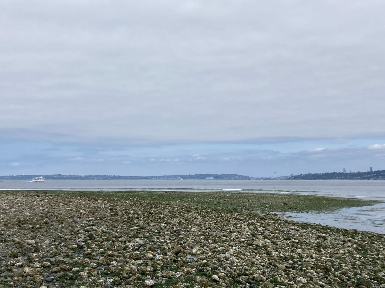 Rocky beach at low tide in Blake Island State park. A boat is sailing away from the island towards downtown Seattle in the distance.