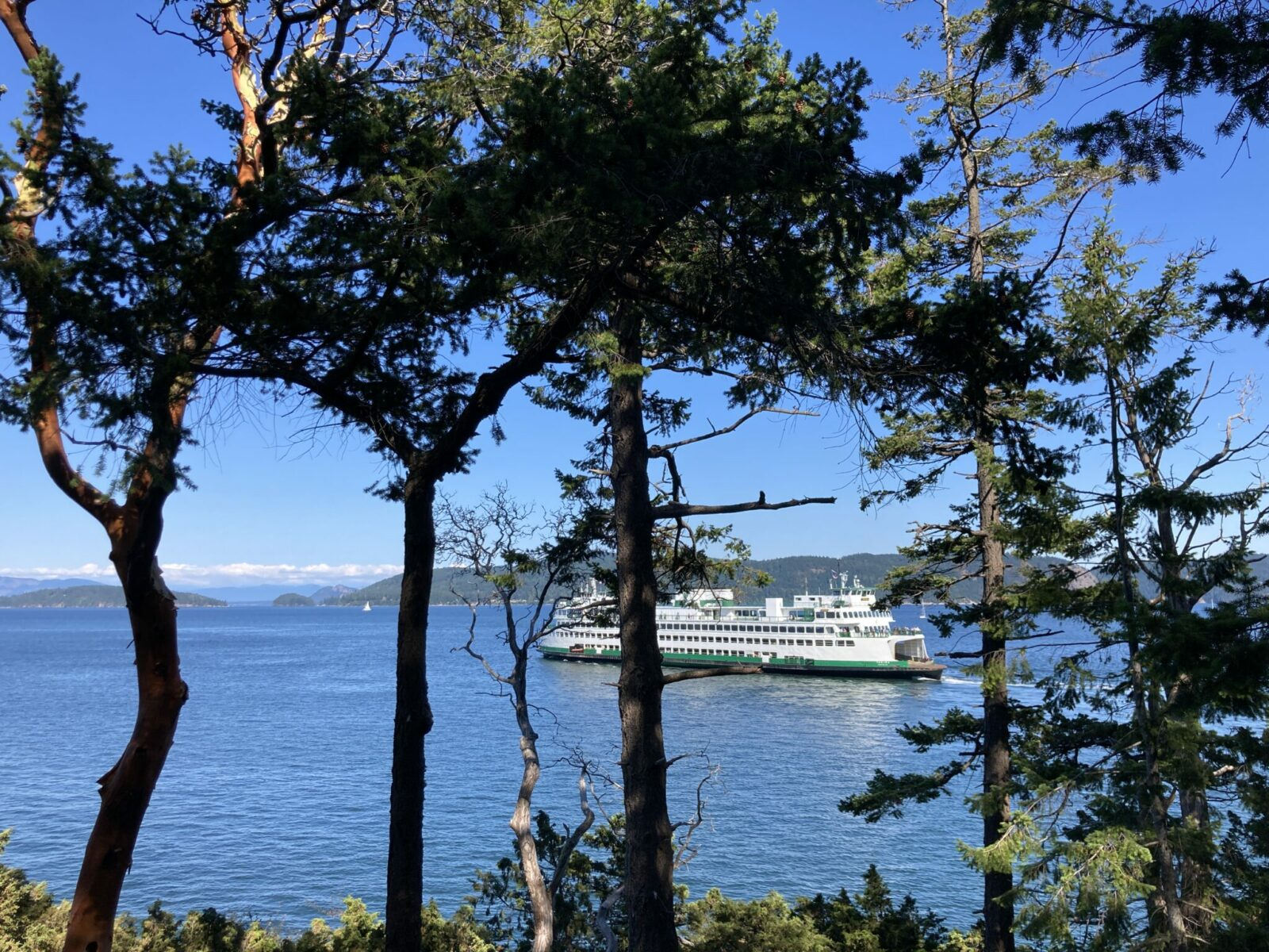 A ferry departing Lopez Island seeing from the hill above through the forest