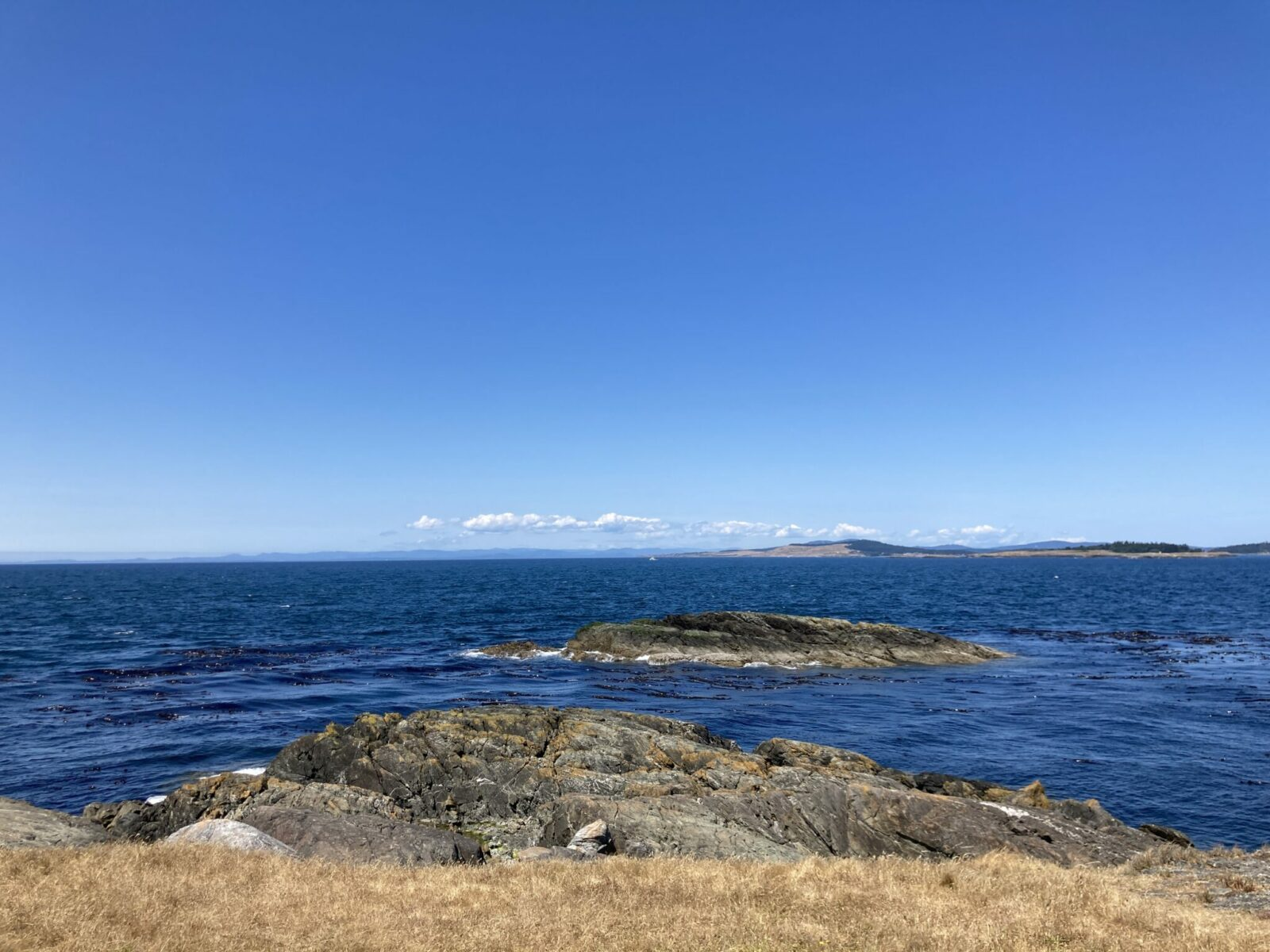 Iceberg Point, one of the best things to do on Lopez Island is at the end of a short hike. There are rocks sticking out into the blue water of the Salish Sea and some rocks exposed just off shore. In the distance is another island
