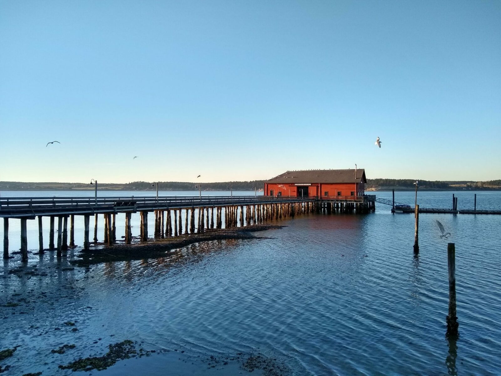 A long wooden pier with a red historic building at the end of it at sunset in Coupeville on Whidbey Island