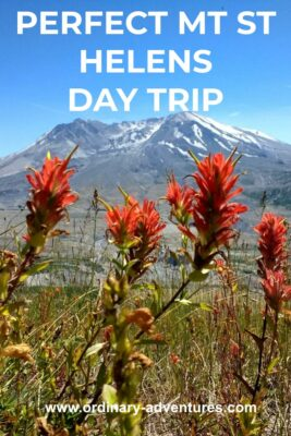 The crater of Mt St Helens is visible across the valley and there are bright red wildflowers in the foreground. Text reads: perfect mt st helens day trip