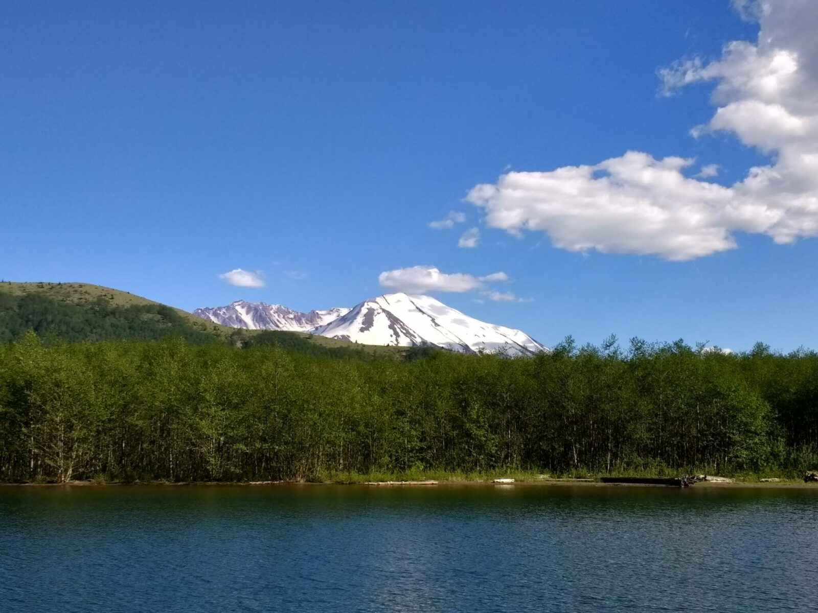 A lake surrounded by young trees with the crater and summit of Mt St Helens with some snow in the background