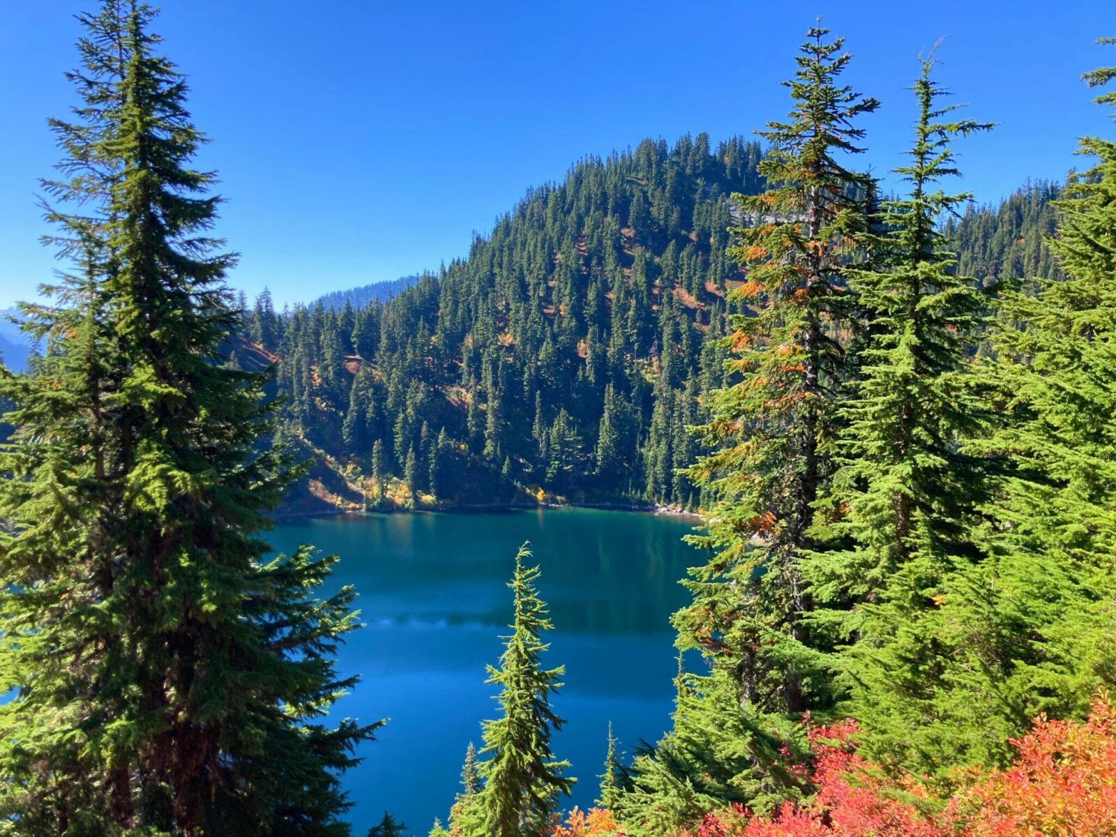 Lake Valhalla is blue and green seen below the trail above. It is surrounded by evergreen trees and red berry bushes on a sunny fall day
