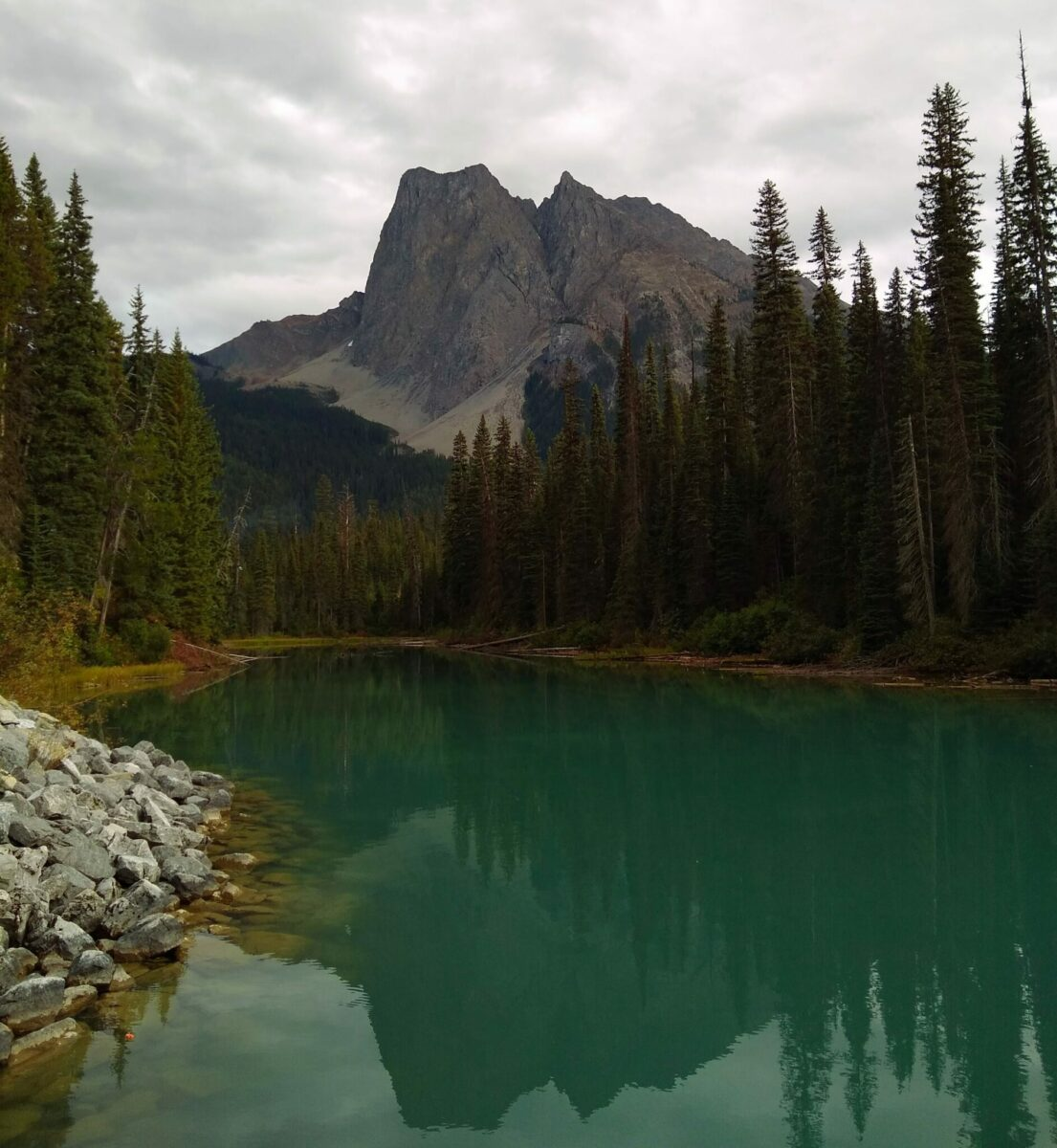 The edge of a very green lake surrounded by forest with a high mountain in the distance