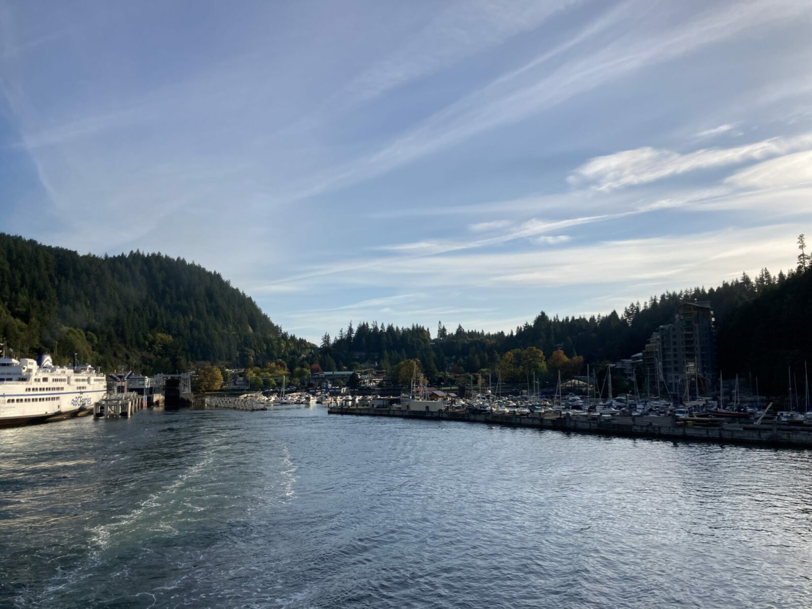 A small harbor with forest around it. There is a large ferry at the dock and the harbor is seen from the deck of another ferry pulling away from the dock
