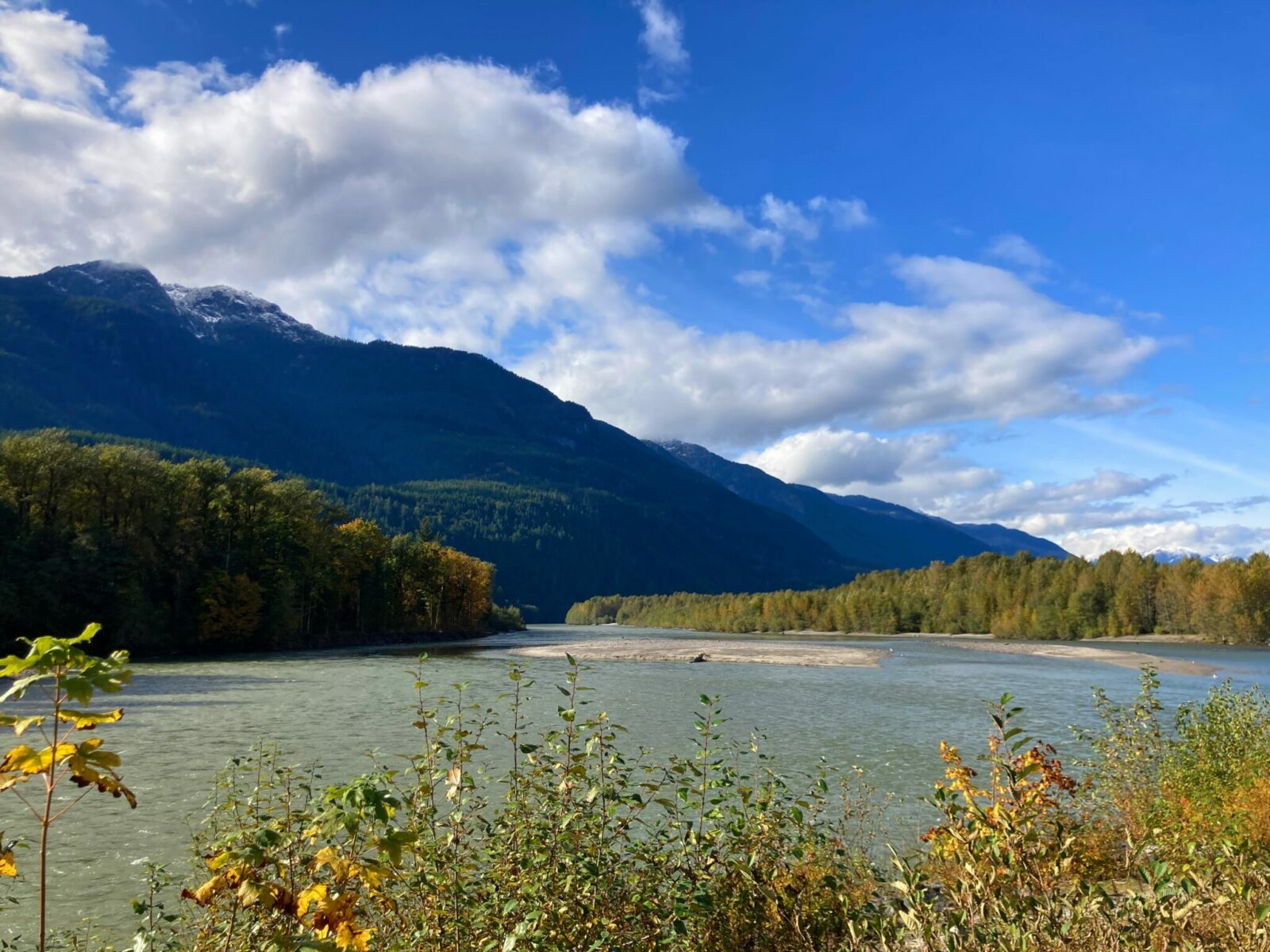 High forested mountains in the background with forest surrounding the sides of a river with a couple of gravel bars in the middle